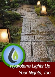 Airdrie outdoor lighting including landscape lighting -- professional installation.